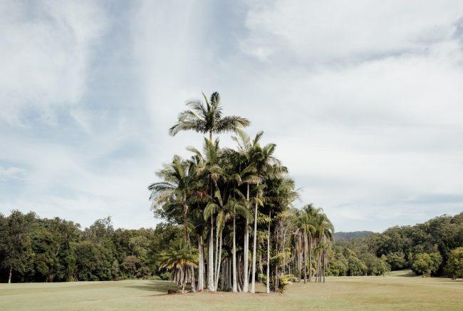 gold-coast-wedding-venue-the-acre-Ivy&Bleu-18