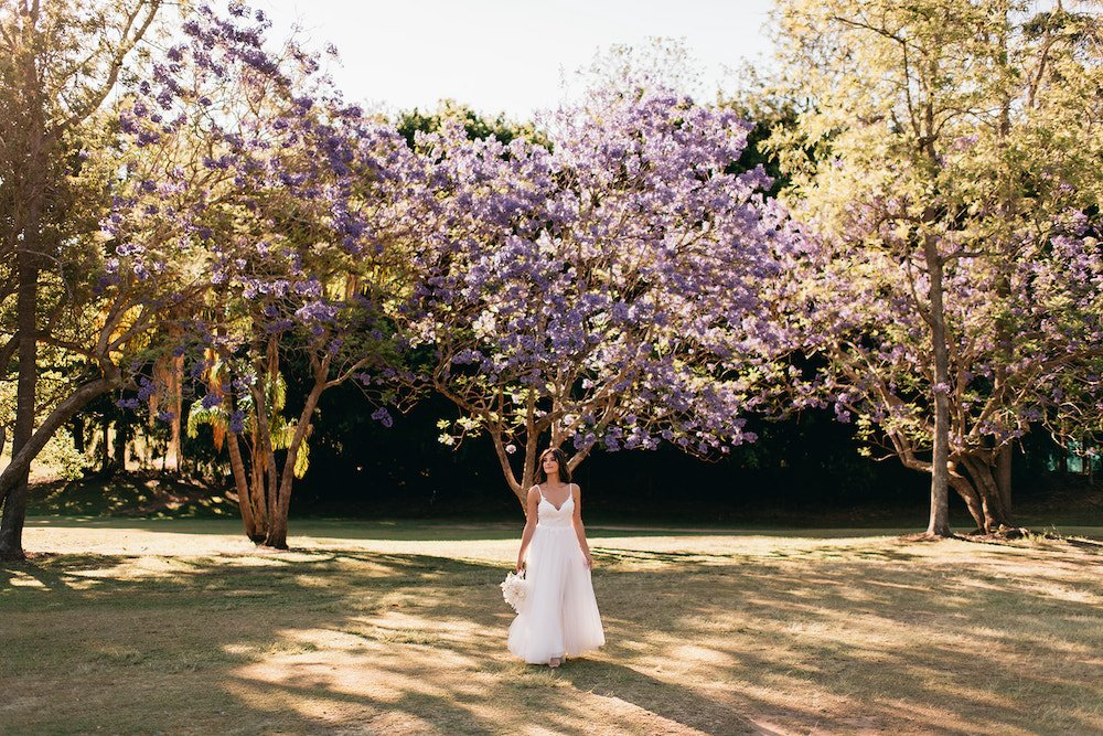 Bride standing in front of blooming jacaranda tree